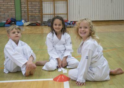 Karate (1)