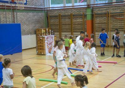 Karate (12)