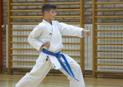 Karate (21)