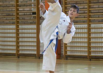 Karate (22)