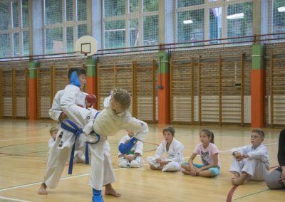 Karate (23)