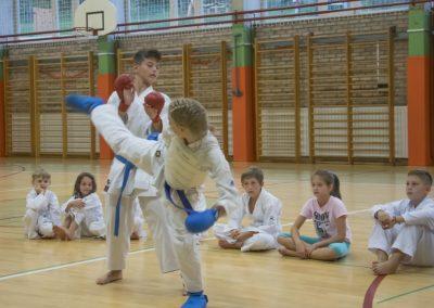 Karate (24)