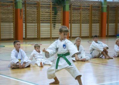 Karate (29)