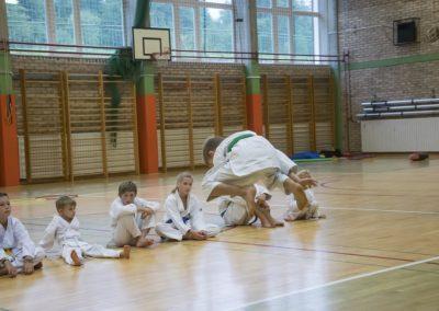 Karate (30)