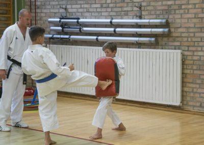 Karate (34)
