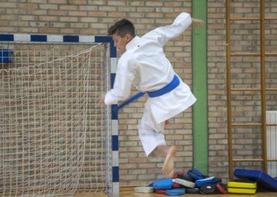 Karate (39)