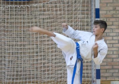 Karate (40)