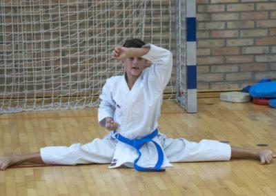 Karate (41)