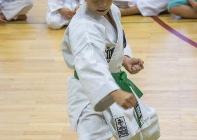 Karate (8)