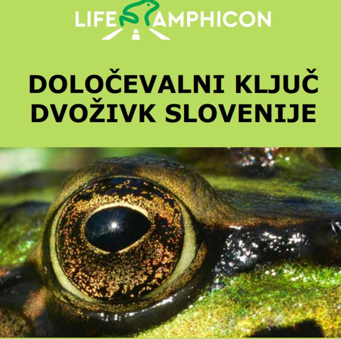 NARAVOSLOVNI DAN 7. razred – Organizmi celinskih voda
